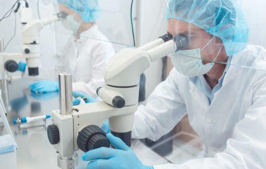 Understanding the European Directive 93/42/EEC concerning Medical Devices